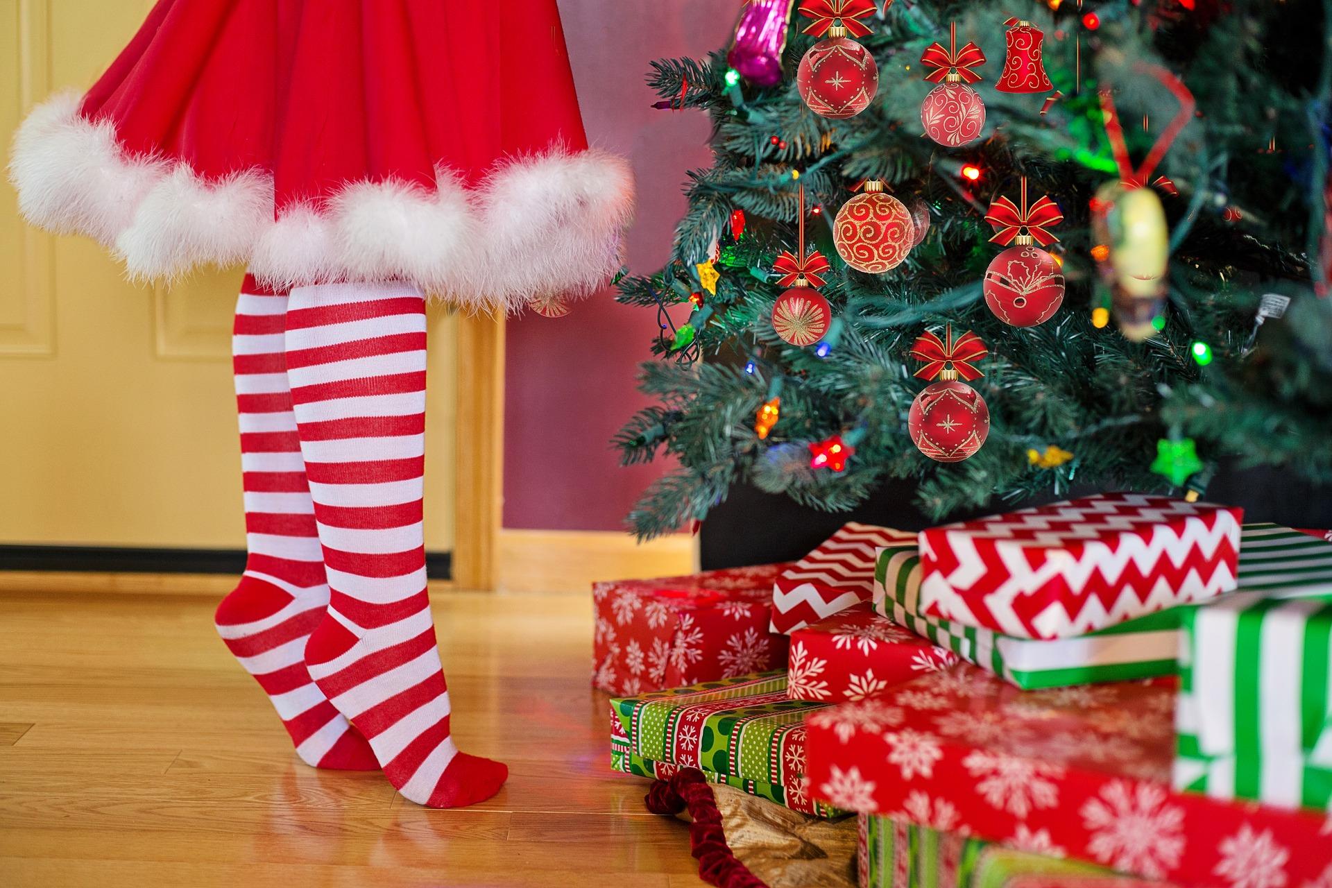 christmas-tree-2999722_1920
