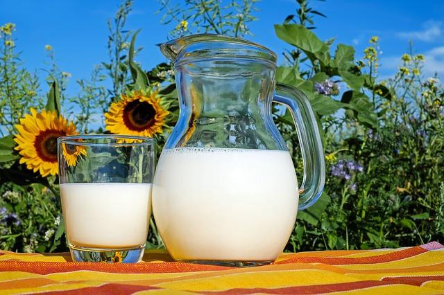 Čo by mali obsahovať mliečne výrobky?