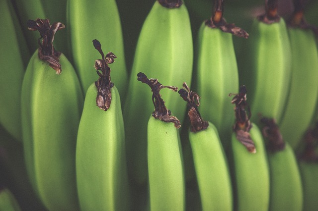 Zelené banány pre zdravú krv